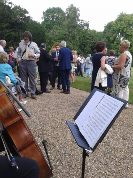 A string section for that special occasion