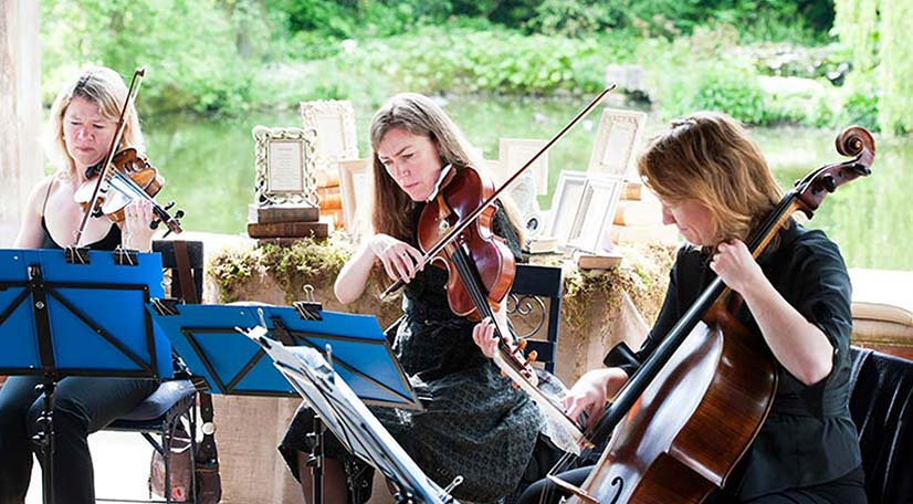 Wedding String Quartet and Duo